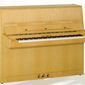Pianos Förster