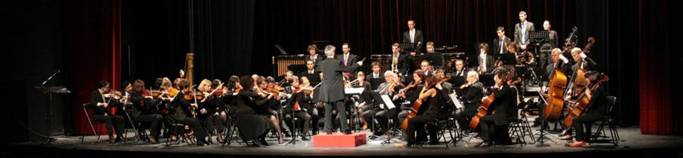 Dimanche 12 octobre à 17h Orchestre Hospices Civils Lyon
